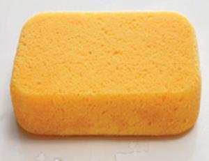 sponge square